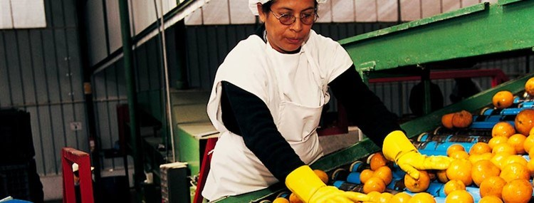 Latin America: in search of more competitive SME's